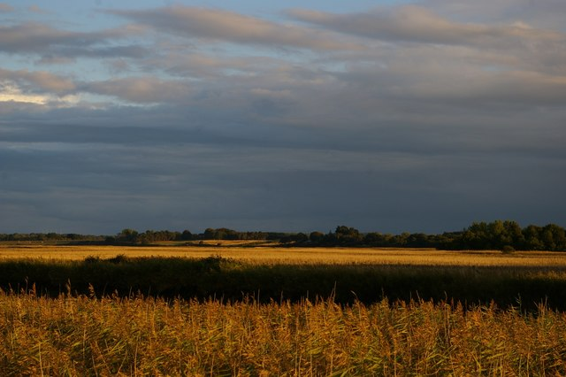 Looking south across the River Alde, Snape, in evening light