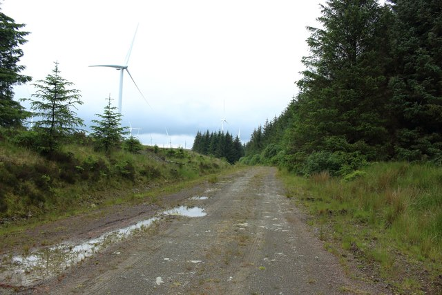 Forest track in Kilgallioch Forest