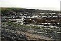 NT4699 : Rocky shore, Kincraig by Richard Sutcliffe