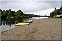 NS3882 : Drumkinnon Bay, Loch Lomond by David Dixon