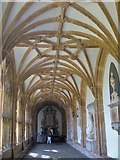 ST5545 : Wells Cathedral [3] by Michael Dibb