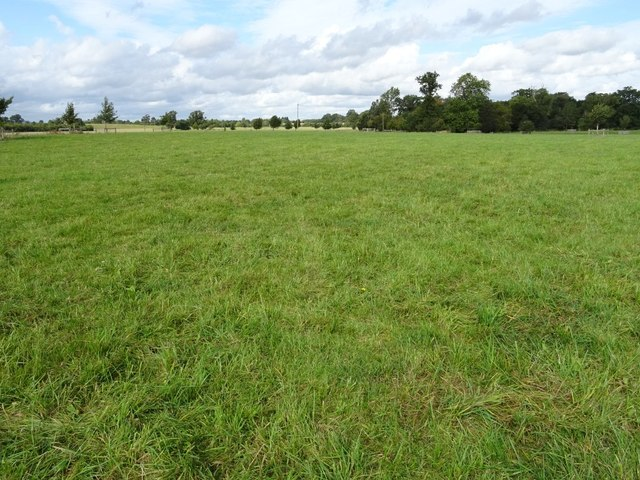 Grassland in Croome Park