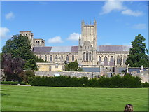 ST5545 : Wells Cathedral [21] by Michael Dibb