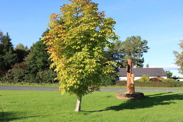 Colour at Garden Wise, Dumfries