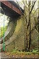 SC3190 : An interesting bridge support by Richard Hoare