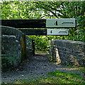 SJ9689 : Footbridge and balance beams near Marple, Stckport by Roger  Kidd