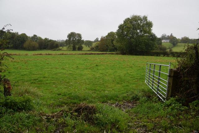 An open field, Annaghilla