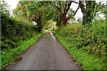 H6056 : Wet along Sess Road by Kenneth  Allen