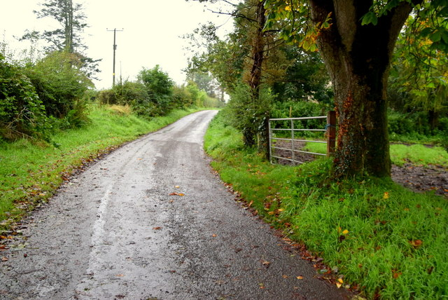 Bend along Sess Road