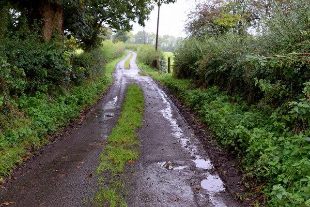 Muddy along Sess Road