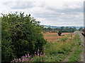 SP0636 : GWSR Trackside near Little Buckland by David Dixon