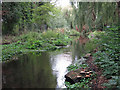 TQ0483 : The River Colne by the Pipemakers Arms by Mike Quinn