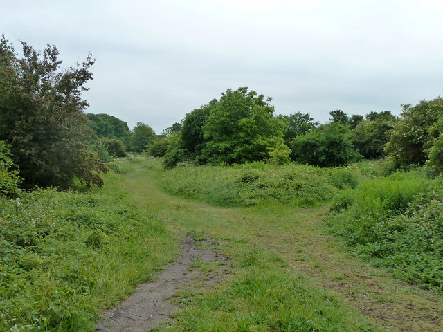 Paths, Roundshaw Downs
