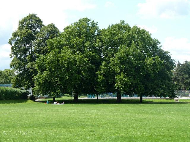In Mellows Park