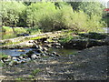 NT5216 : Remains  of  old  weir  on  River  Teviot by Martin Dawes