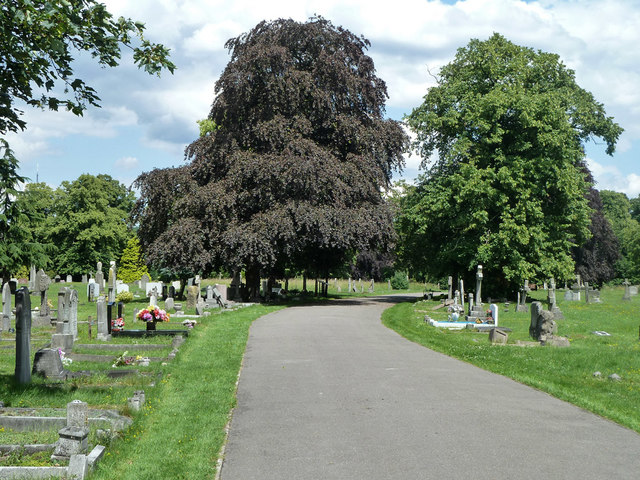 Main drive, Queen's Road Cemetery
