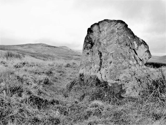 Fechan Menhir - Largs, North Ayrshire