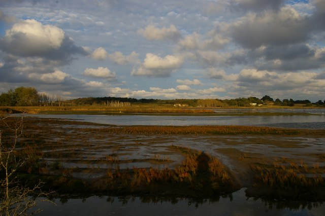 Hazlewood Marshes