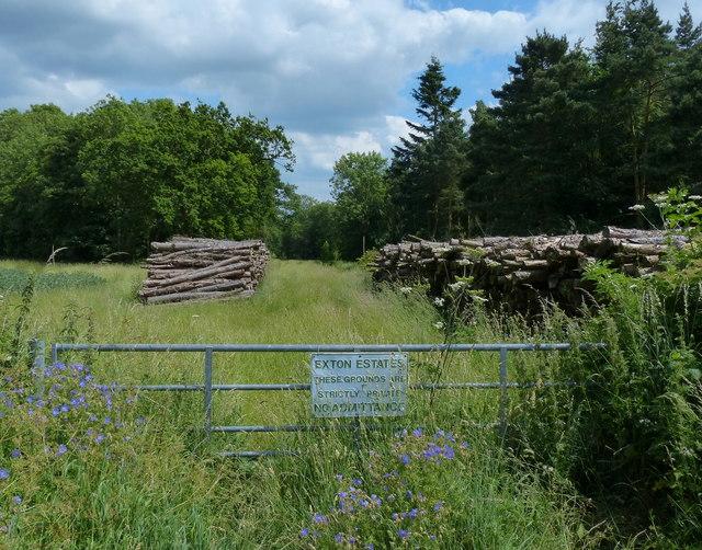 Woodstacks at Cottesmore Wood