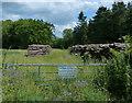 SK9113 : Woodstacks at Cottesmore Wood by Mat Fascione