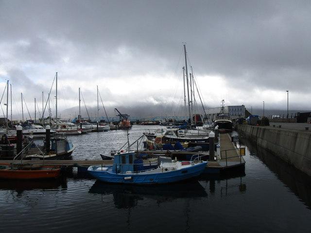 The marina at Fenit