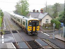 W7871 : The Cobh train at Fota by Gareth James