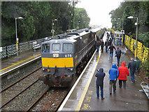 W7871 : Railtour at Fota by Gareth James