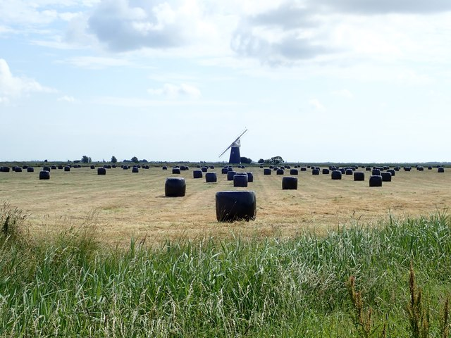 Big bales on Halvergate Marshes
