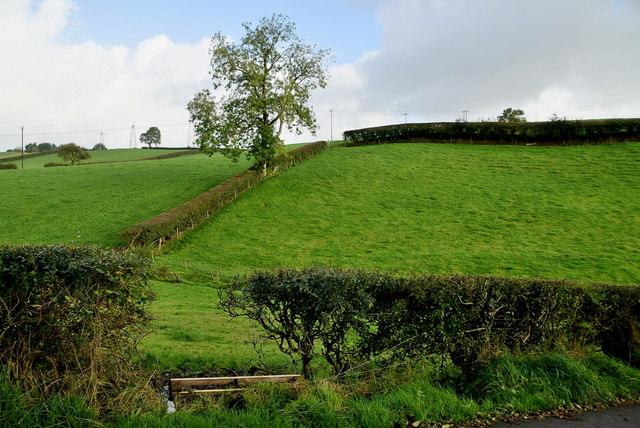 Three townlands, Kivlin, Beagh and Lissan meet here