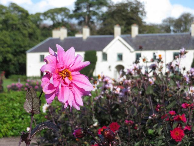 Killarney House gardens