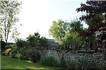 SP9594 : Garden wall on Red Lodge Road, Bulwick by David Howard