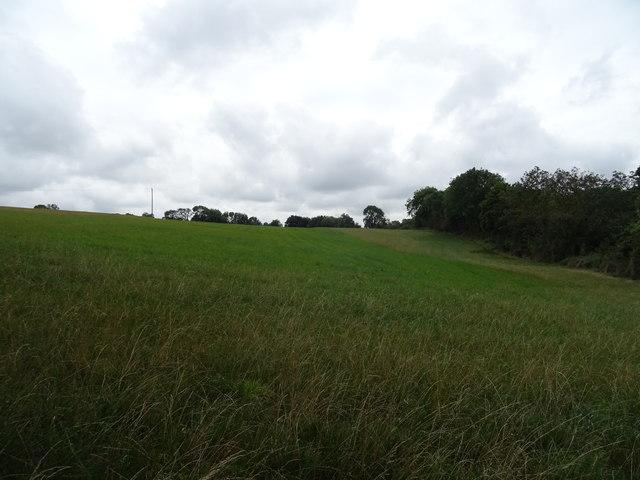 Hillside field off the B4035