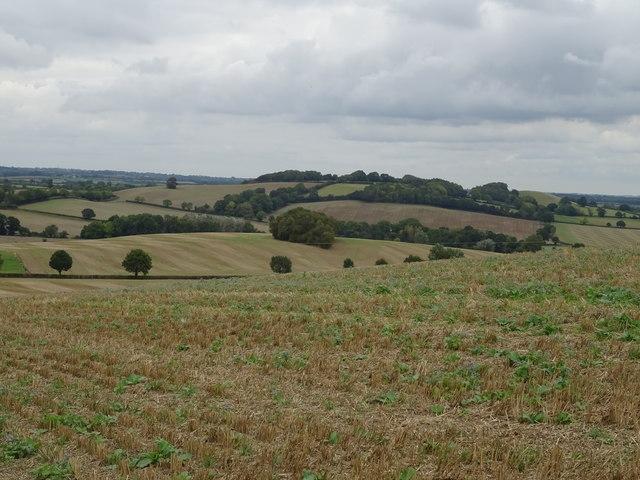 Stubble field just off the B4035 near Swalcliffe