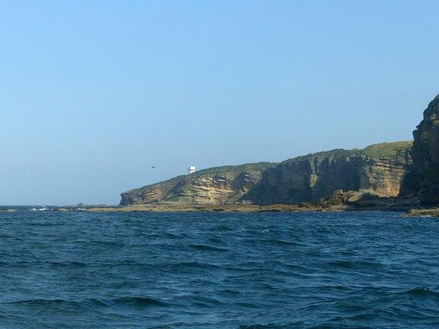 Sandstone cliffs along the Moray Coast