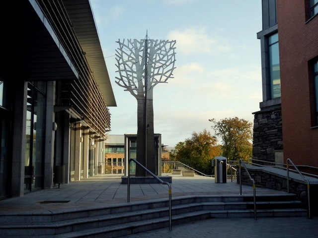 Townland tree, Strule Arts Centre, Omagh