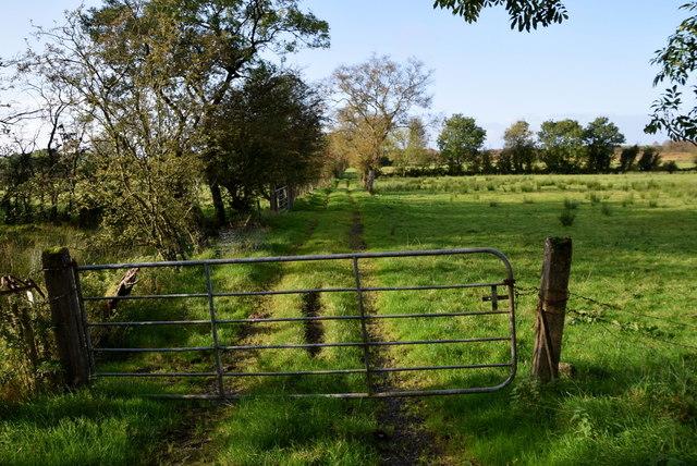 Track along a hedge, Deroran