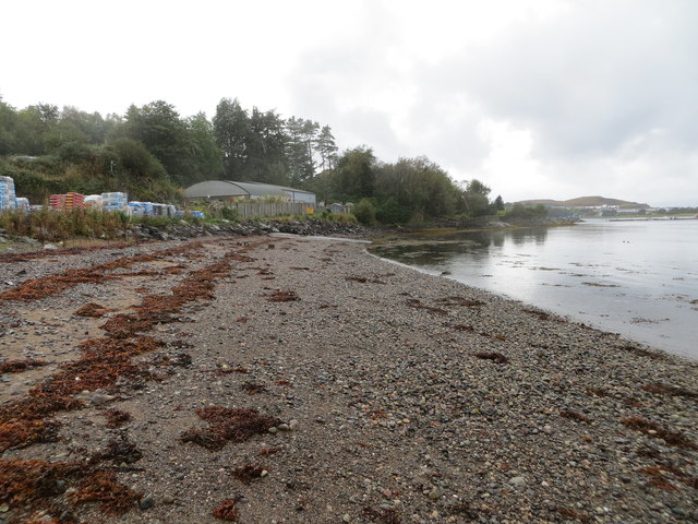 The shoreline of Dunstaffnage Bay at Poppies Garden Centre