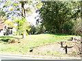 TL7818 : St. Etheldreda Churchyard by Adrian Cable
