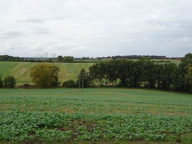 Crop field and power lines, Tadmarton