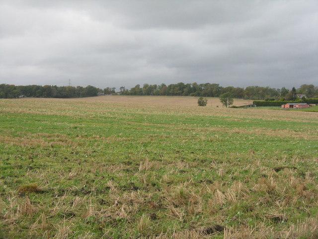 Stubble field at Remiltoun