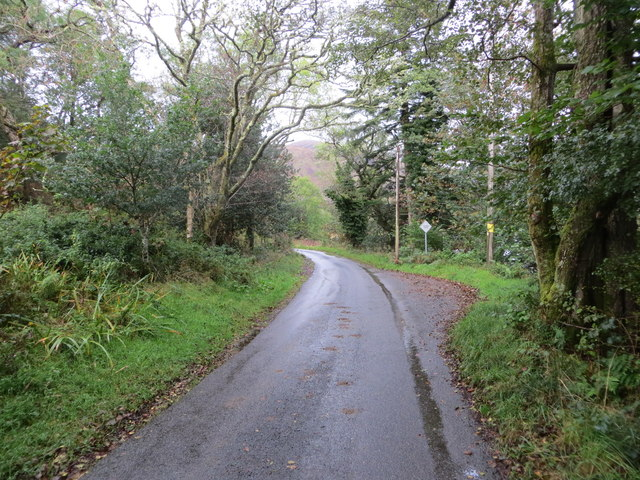 Tree-lined minor road heading towards Inveresragan