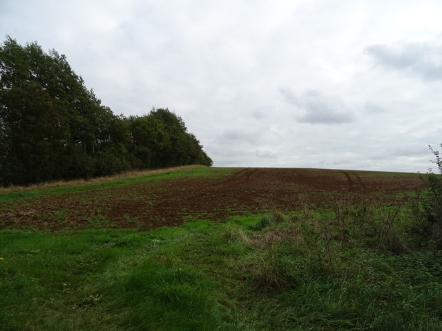 Hillside field off Broughton Road
