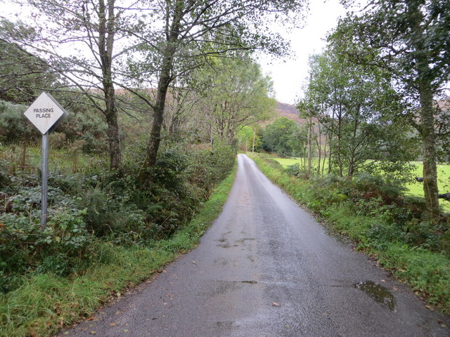 Hedge and tree-lined minor road heading towards Inveresragan