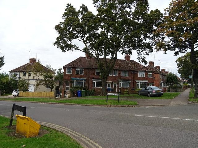 Houses on Ruscote Avenue, Banbury