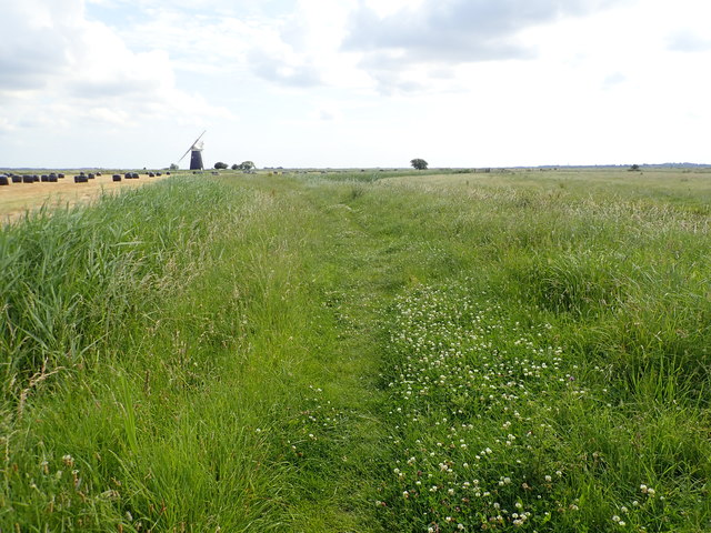 Weavers' Way on Halvergate marshes