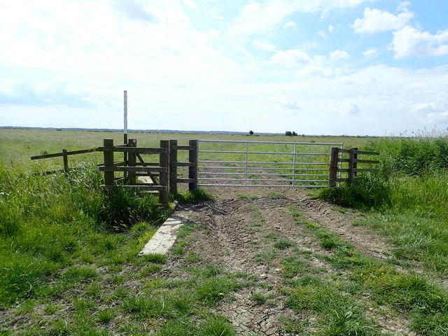 Gates on an embankment on Halvergate Marshes
