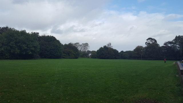 Parkland in Wilnecote