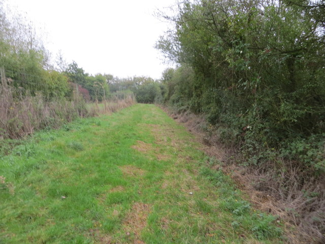 Enclosed grass track