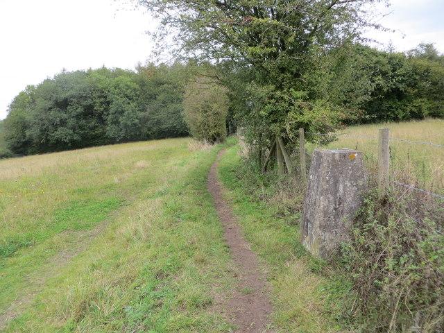 Field-edge footpath to Langton Wood