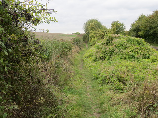 Enclosed footpath beside the Wendover Arm of the Grand Union Canal at Little Tring